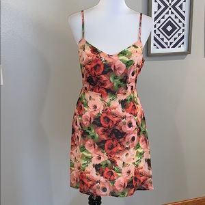 Nordstrom BB Dakota NWT Dress